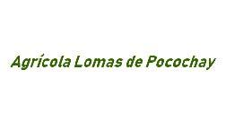 Lomas de Pocochay